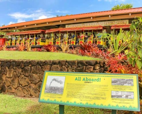 All Abord Dole Plantation Tour Sign