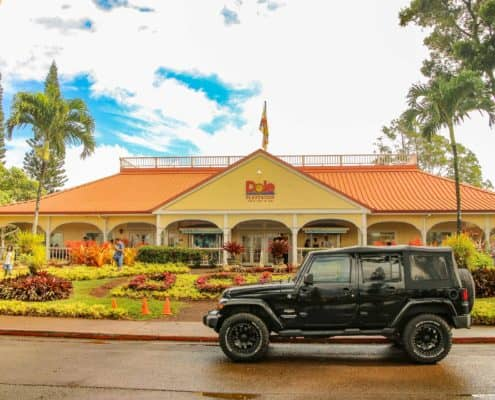 A Jeep in Front of Dole Plantation Entrance