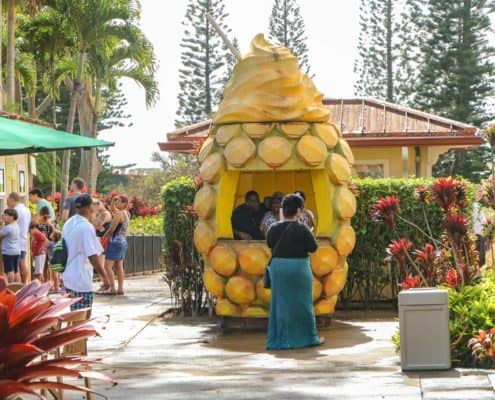 Dole Plantation Giant Pineapple Picture Booth