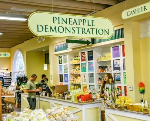 Pineapple Demonstration Booth at Dole Plantation