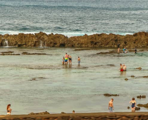 North Shore Tide Pool Swimmers