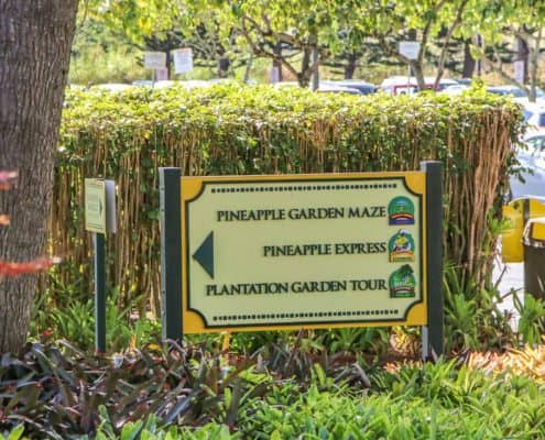 Dole Pineapple Plantation | Tour Stop Tips, Info & Sweet ...