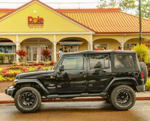 Private Jeep Tour at Dole Plantation Entrance