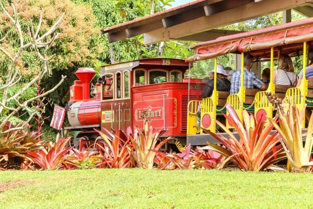 Train Tour at Dole Plantation