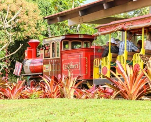 Train Tour at Dole Plantation