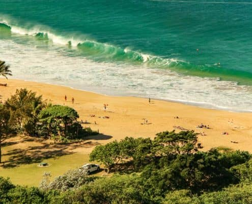 Waimea Beach with Waves