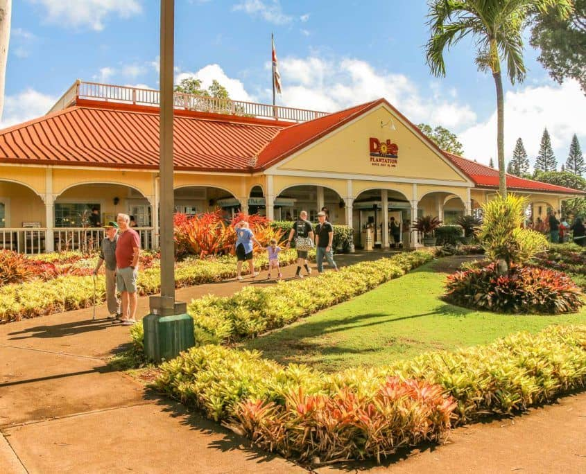 Walkway at Dole Plantation Entrance