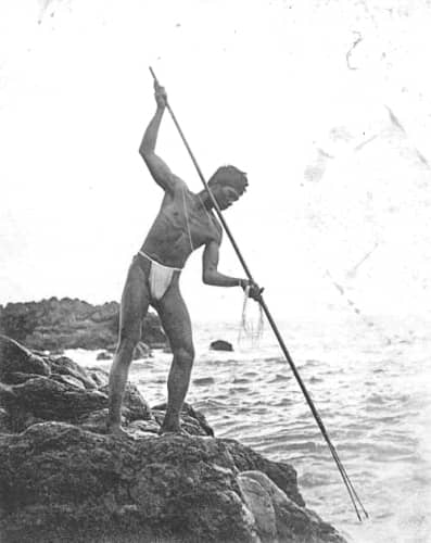 Hawaiian man spear fishing, Hana, Maui, ca. BishopMuseumImage