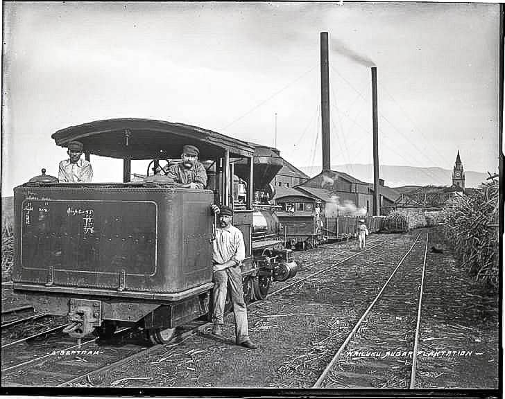 Wailuku Sugar Plantation and train workers(), photograph by Brother Bertramlate's