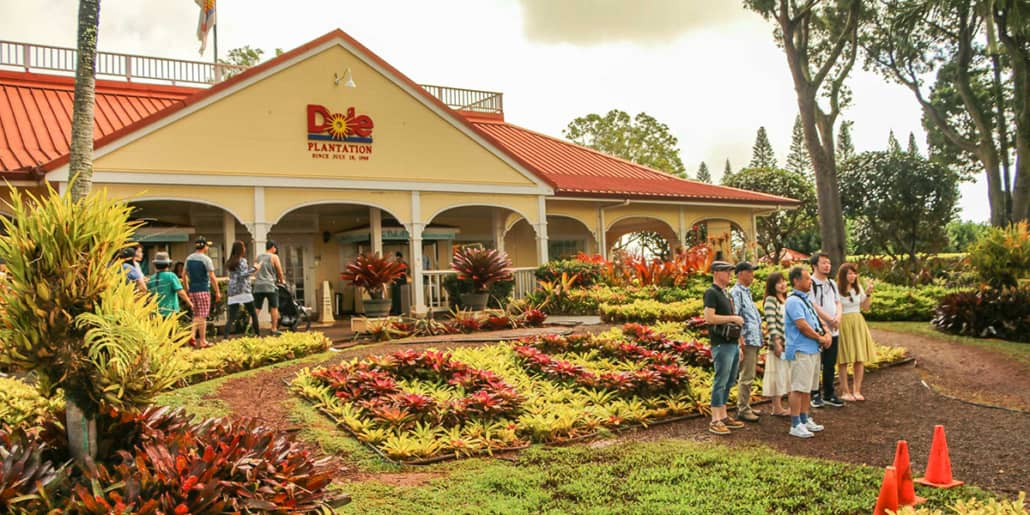 dole plantation group picture new