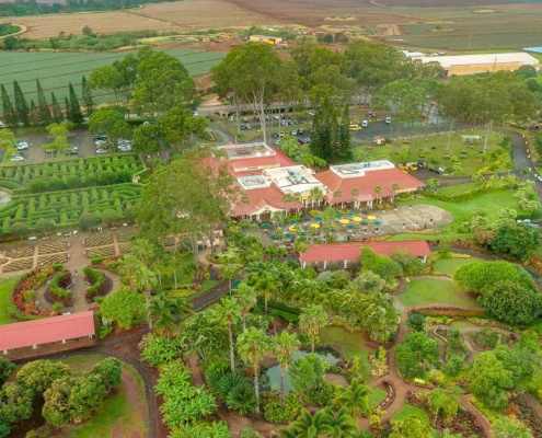 Dole Pineapple Plantation Aerial