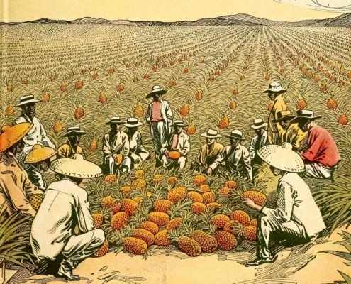 Workers In Pineapple Plantation