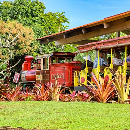 Hawaii Best Tour Dole Plantation Train