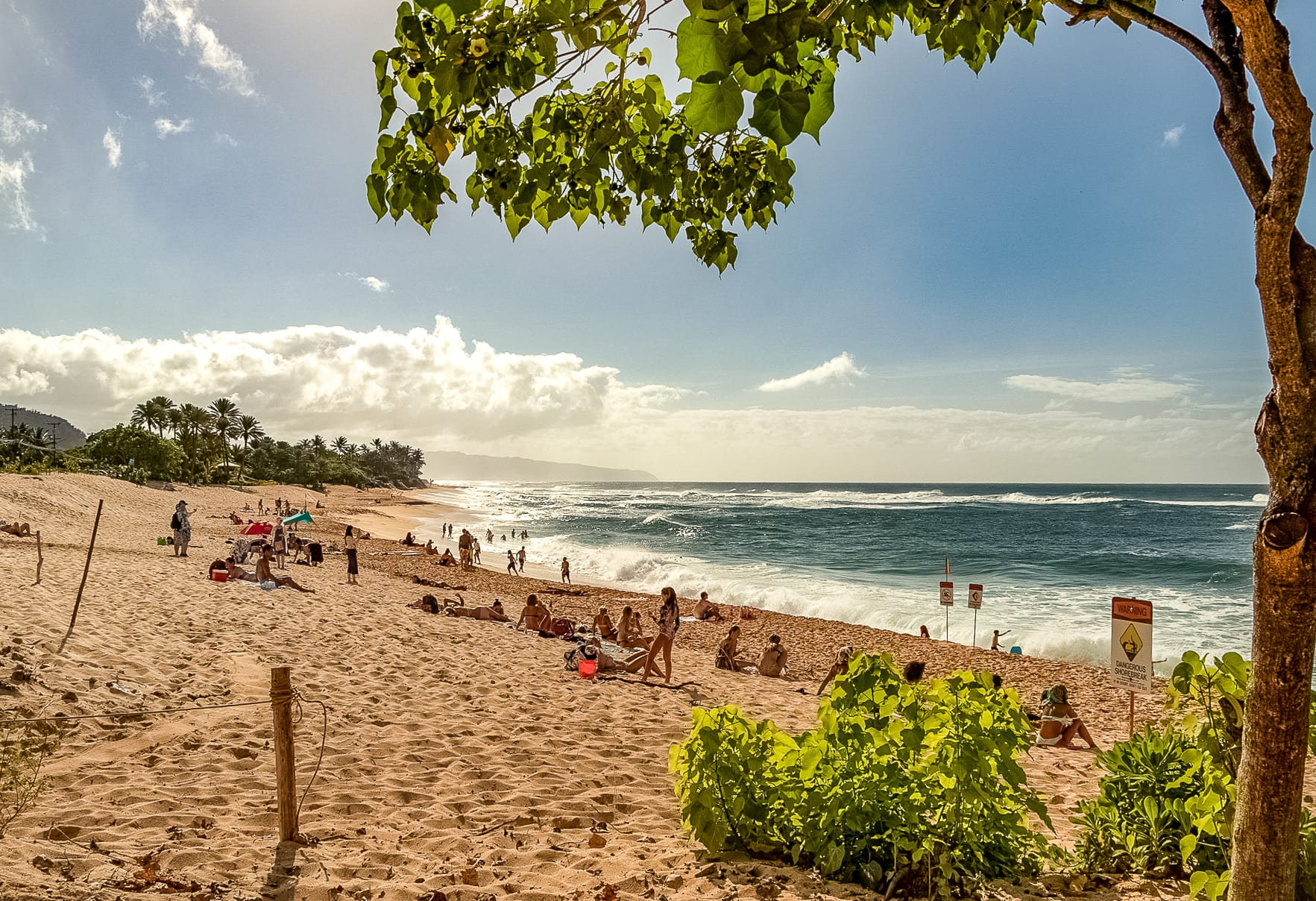 North Shore Beaches wide Oahu