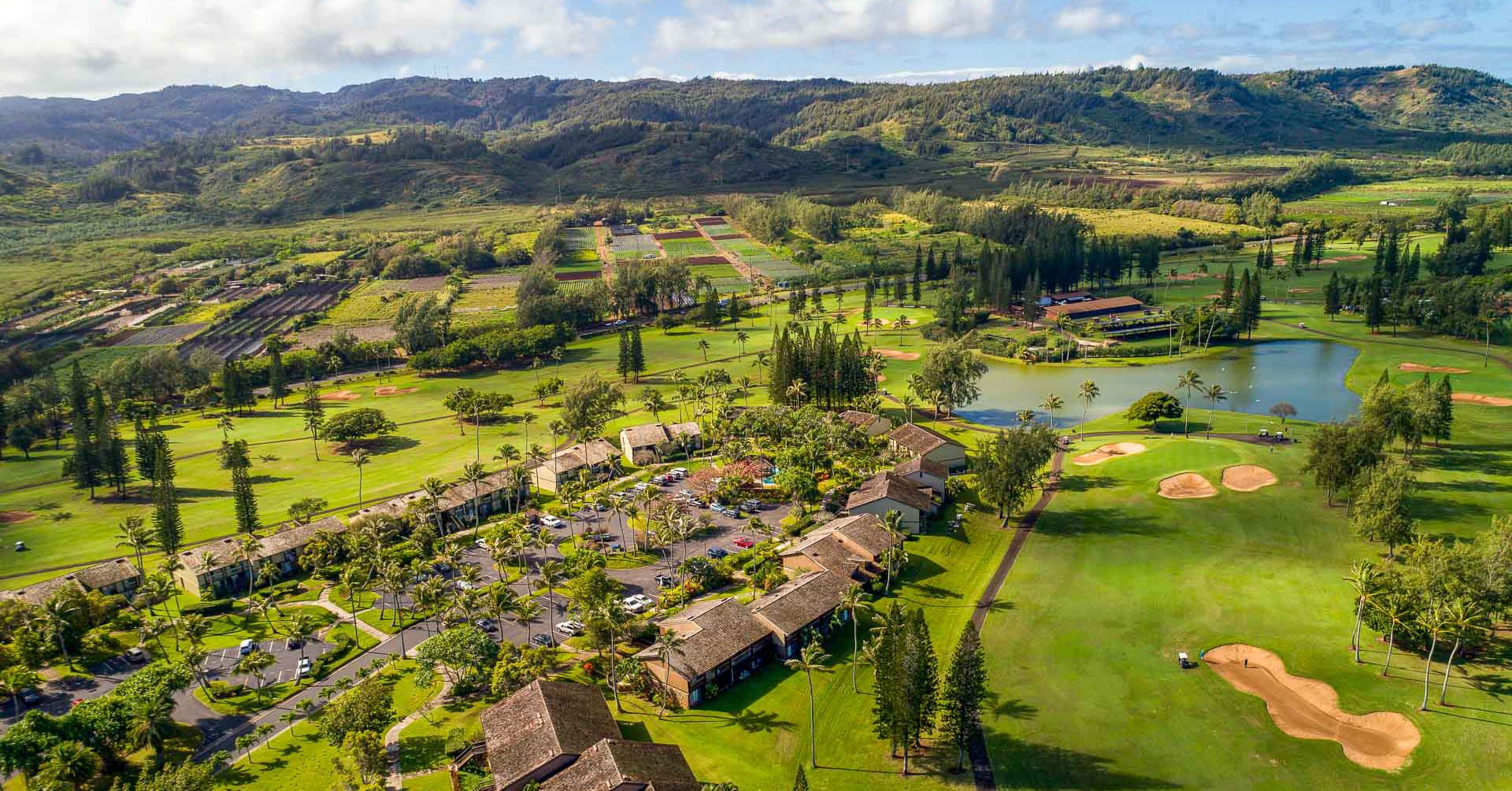 Turtle Bay Resort Cottages and Golf Aerial