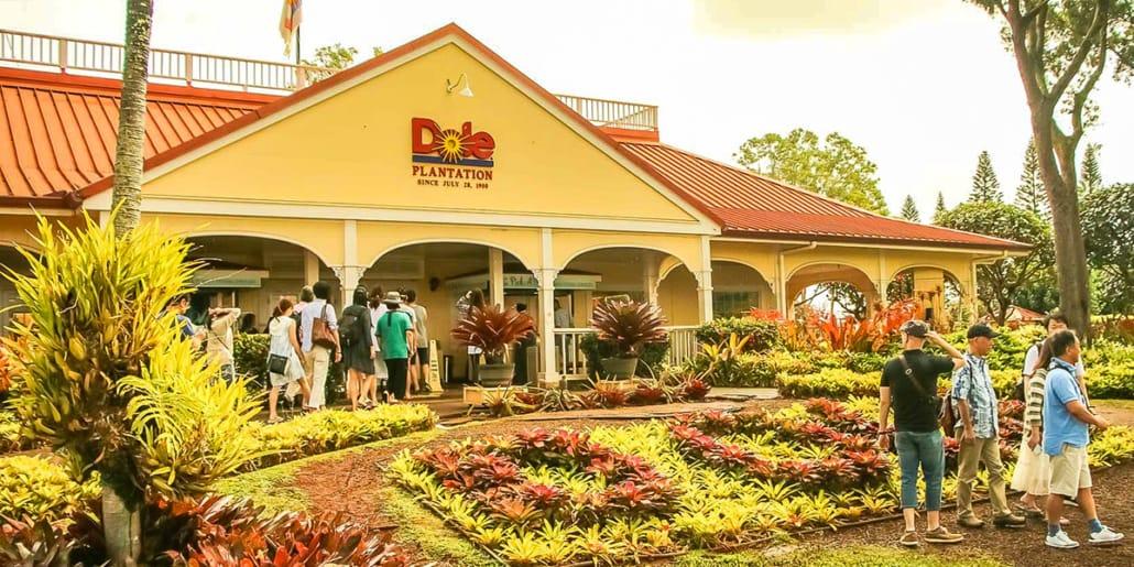 Dole Plantation Entrance and Visitors